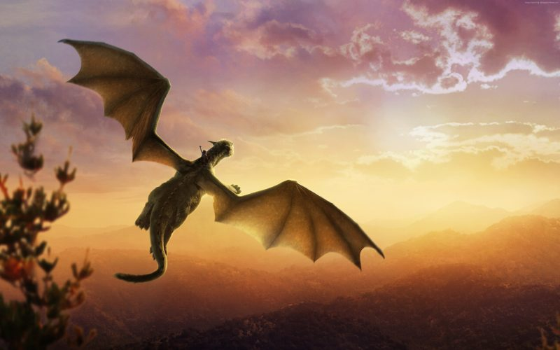 The Dargon Took Me! : Udipta Bohara